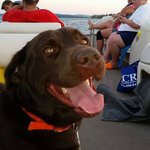 "The ""Dukester"" enjoying the boat ride our first night!  Great time!"
