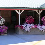 Greybull Motel floral welcome