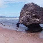 Barbados, Walter holding up a rock, Bathsheba beach