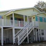 Island Dog Cottage
