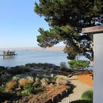 view of Tomales Bay from Birch upstairs deck