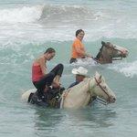 Cane Bay on the North Shore horseback riding!
