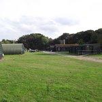 Thorpe Camp