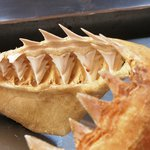 Great White Shark Jaw