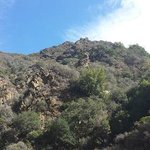 Looking up at the mountainside