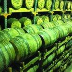 Hellyers Road Distillery cellar