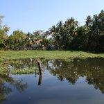 Photo of Lake Paradise Backwater Front Resort