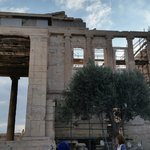 Temple of Athena Nike with the supposed first olive tree