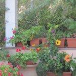 Une terrasse bien décorée