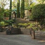 Romantic chalet style villas in a garden setting