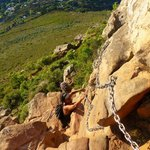 Scaling Lion's Head