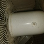 filthy fan