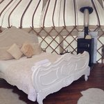 Elderflower yurt