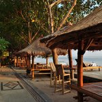 The palapas outside, perfect place to relax, eat and drink..