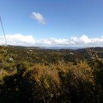 Beautiful Waiheke vista