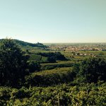 Soave old Castle... Great views from the house!