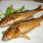red mullet dish