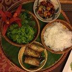 Fried vegetarian spring rolls