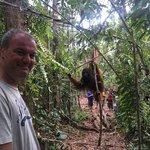Getting as close as you should to an orangutan