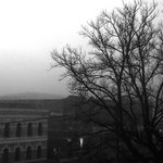 Early morning fog over Launceston. View from room