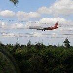 widok z parku na lądujący samolot