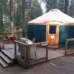 My Yurt.