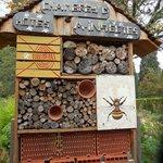 Aménagements pour les insectes