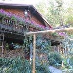 Foto de Welch Mountain Chalet Bed & Breakfast