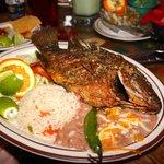 Foto de Ostioneria Bahia Mexican Seafd