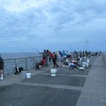 Fishermen fill the pier but hauled in a steady catch