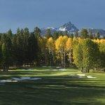 Big Meadow Golf Course #14