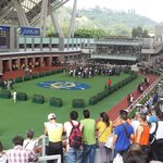 Parade ring, good place to take a close look on each horse