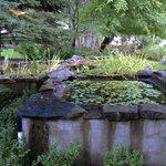 Water plant tanks.