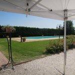 Il parco e la piscina