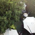 屋上から見た裏庭