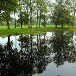 城址の中の池