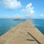 New Dock and Palapa..... Great Snorkeling