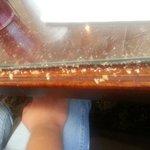 Roach food