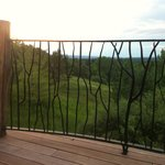 Wrought Iron Fence and Railing on Hilltop House Veranda