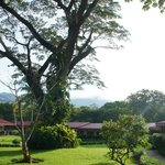 Hotel court yard in the morning sun