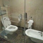 Toilet has no shattaf hose