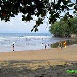 view pantai Dari bawah pohon