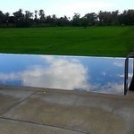 infinity pool overlooking the rice paddy