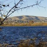 Badger Mountain Centennial Preserve