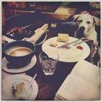 Bailey, Bowls, Breakfast