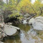 creek alongside the trail in this loop