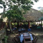 Dining under thatched canopies