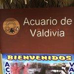 Parque Marino Valdivia