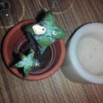 Funny cactus por si fuera poco