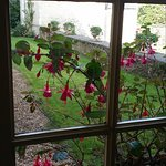 flowers peeking into the breakfast room with view of chapel in background